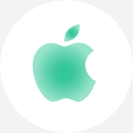 Apple MFI