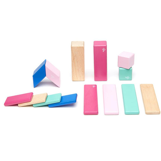 Tegu 14-Piece Magnetic Block Set - Blossom