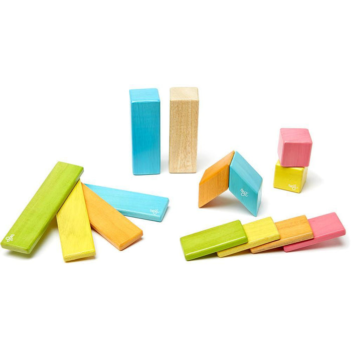 Tegu 14-Piece Magnetic Block Set - Tints