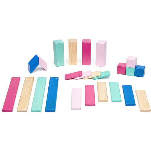 Tegu 24-Piece Magnetic Block Set - Blossom