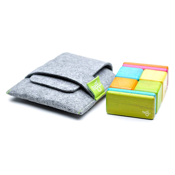 Tegu Original Pocket Pouch Tints