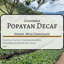 Colombia Popayan Reserve Decaf (Coffee Beans)