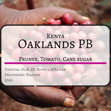 Kenya Oaklands Peaberry (Coffee Beans)