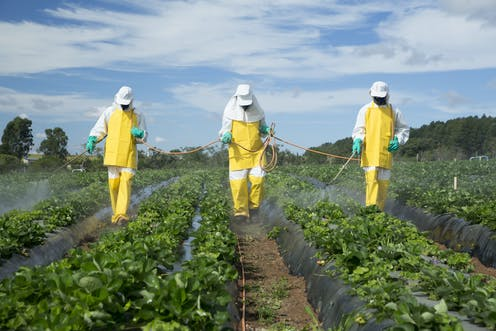 Pesticides and chemicals sprayed onto crops non organic farming