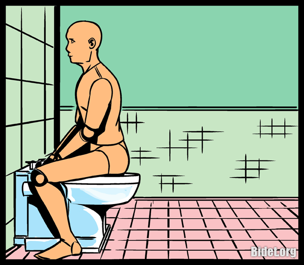 Image result for straddling toilet