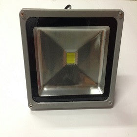 Spot DEL Floodlight 100W 110V