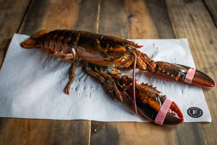 Whole Raw Scottish Lobster 550g+/-