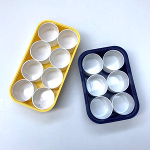 Plastic Tray - 6 or 8 pots