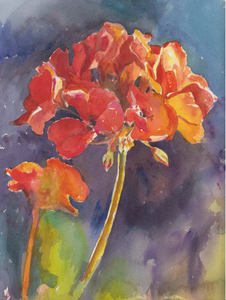 Reta's Geraniums - Original Watercolour