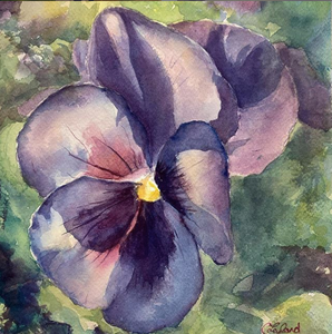 Purple Pansy - Original Watercolour Painting