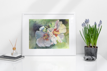 Load image into Gallery viewer, Rose of Sharon - Fine Art Print