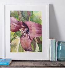Load image into Gallery viewer, Ontario Red Trillium - Original Watercolour
