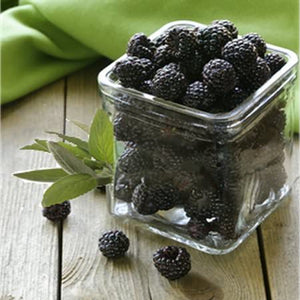 Glass of blackberries and leaves of sage wax scent