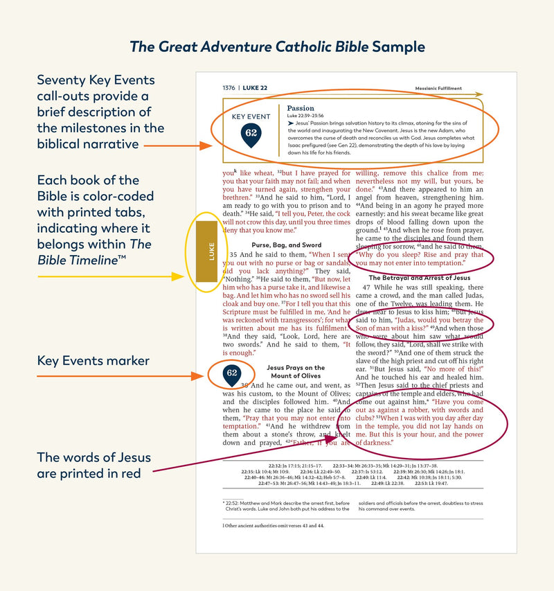 Great Adventure Catholic Bible