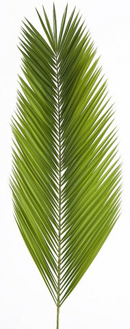 Date | Palm Altar Decorations