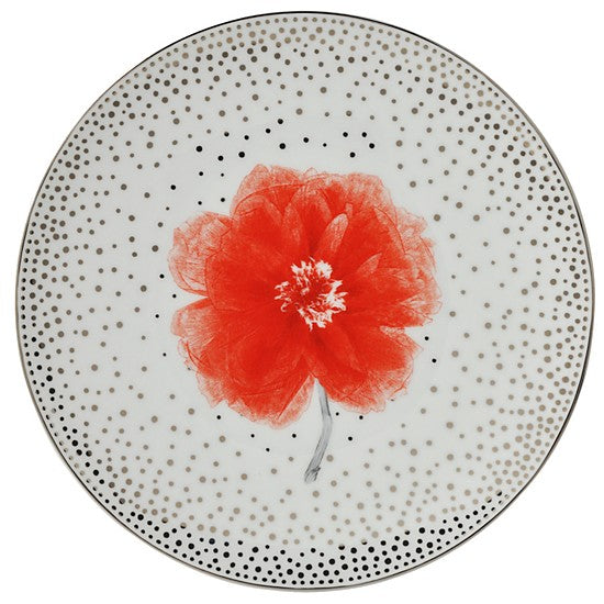 Top Set of 4 Assorted Salad Plates