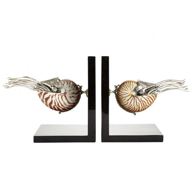 Nautilus Shells Bookends
