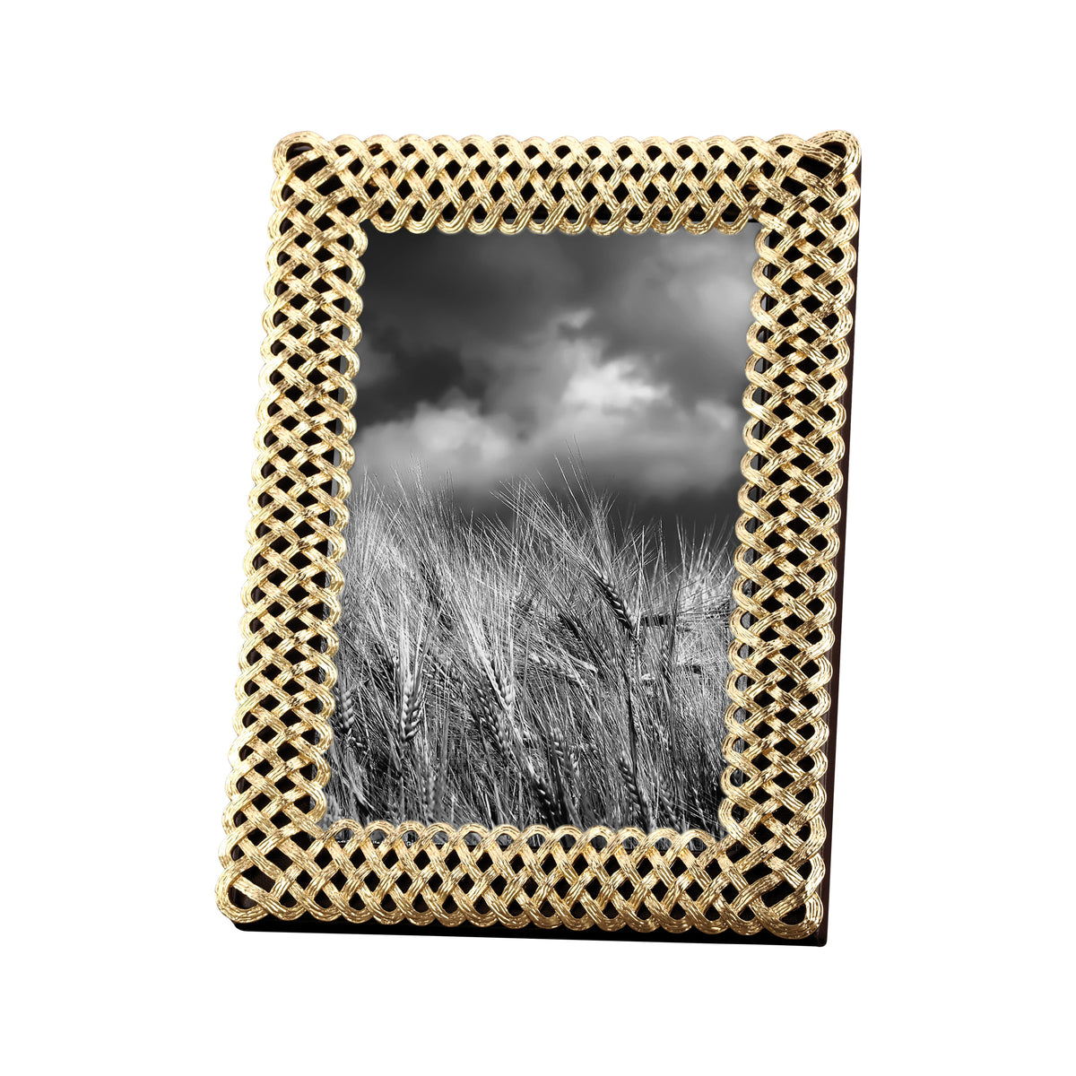 "Gold Plated Braid Frame 5""x7"""