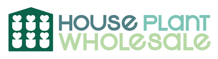 House Plant Wholesale