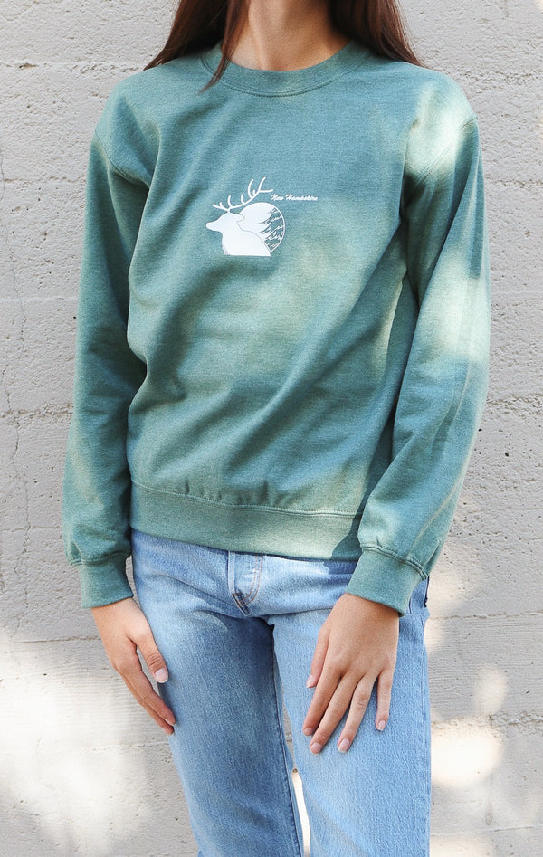 NYCT Clothing New Hampshire Sweatshirt - Light Green