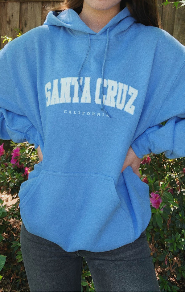 NYCT Clothing Santa Cruz Hoodie - Blue