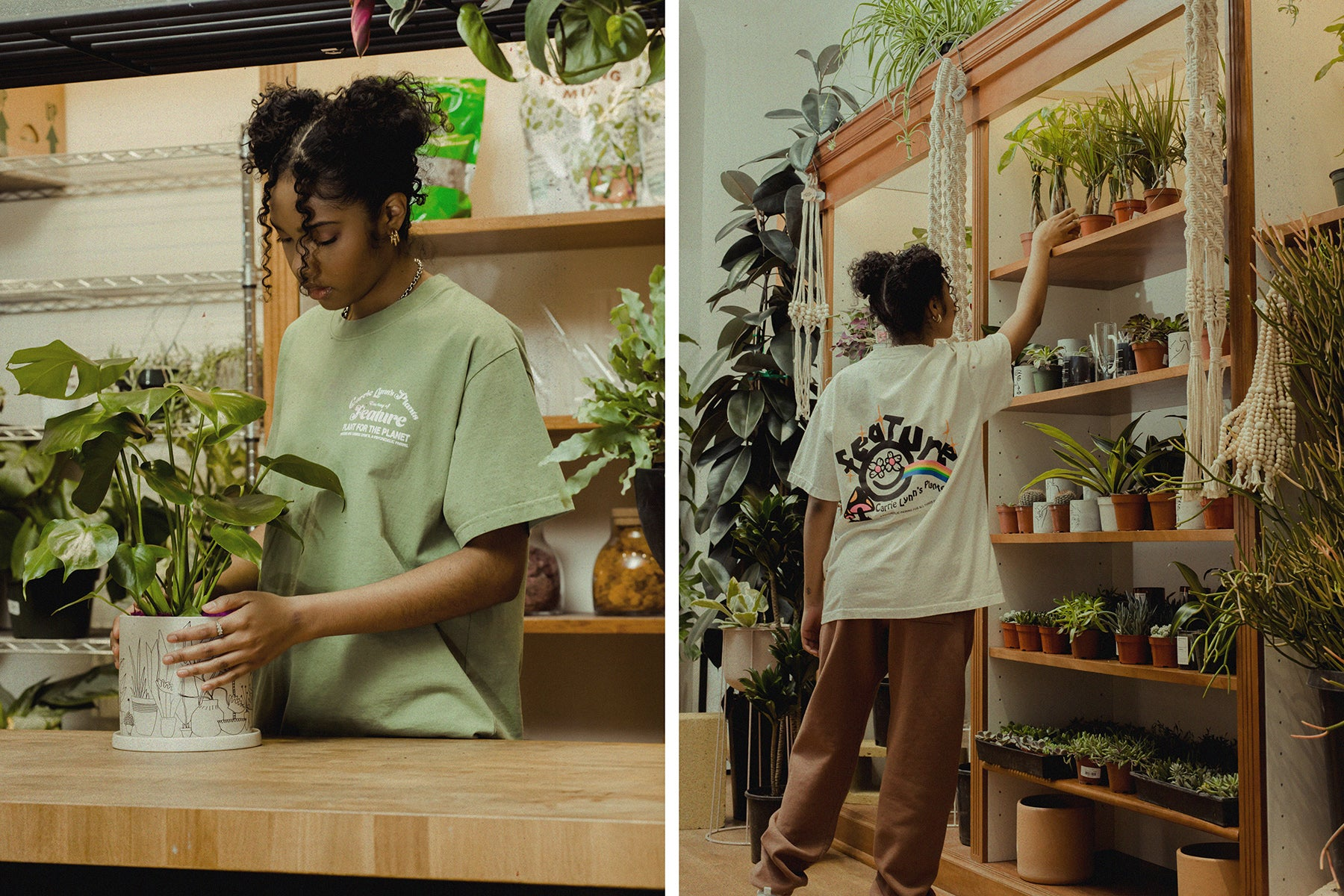 Carrie_Lynns_Plants_x_Feature_-_Feature_LV_-_11511.jpg?v=1615505324