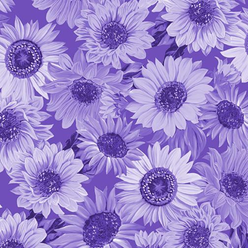 "108"" Sunflower Whispers Wide Quilt Back Purple"