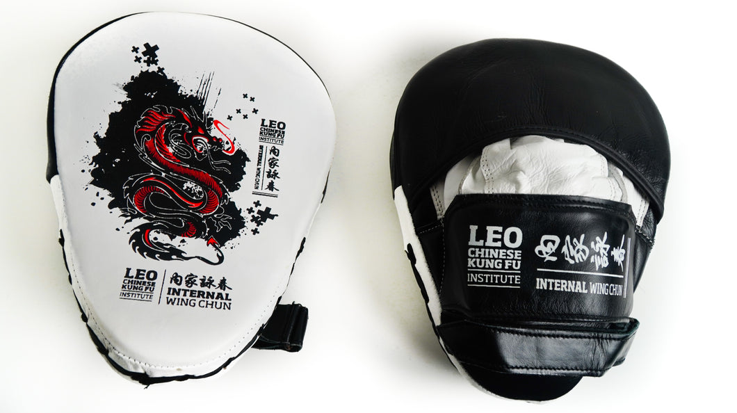 Leo Chinese Kung Fu Leather Professional Focus Mit