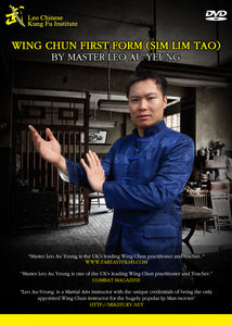 Wing Chun Chi Sau Foundation downloadable online course