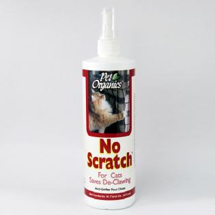 No Scratch For Cats