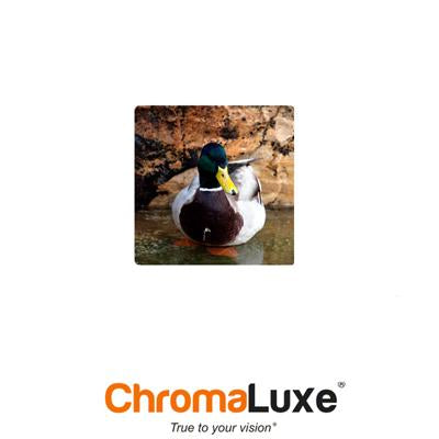 "ChromaLuxe Sublimation Blank Aluminum Photo Panel - 6"" x 6"" - Gloss White"