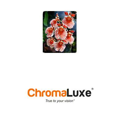 "ChromaLuxe Sublimation Blank Aluminum Photo Panel - 4"" x 6"" - Gloss Clear"