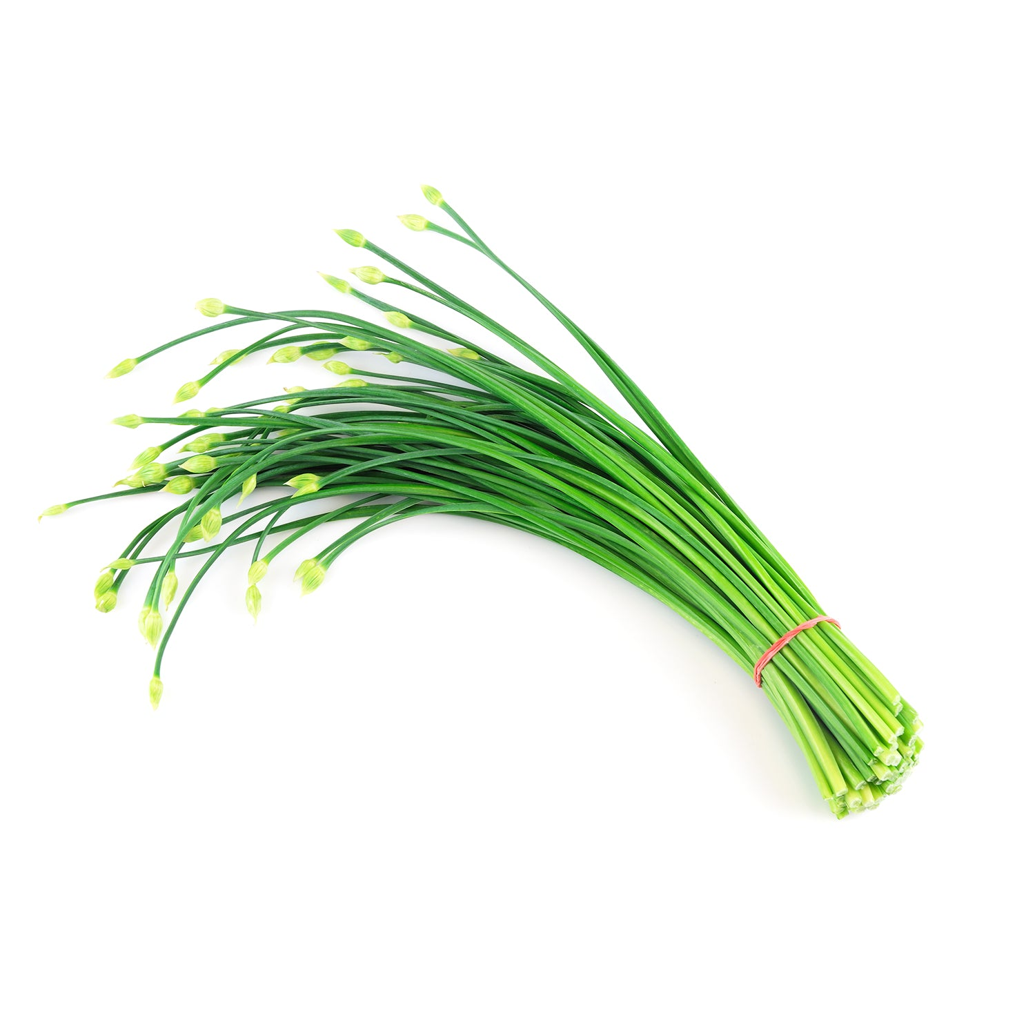 Chives Flowers (4-6oz)