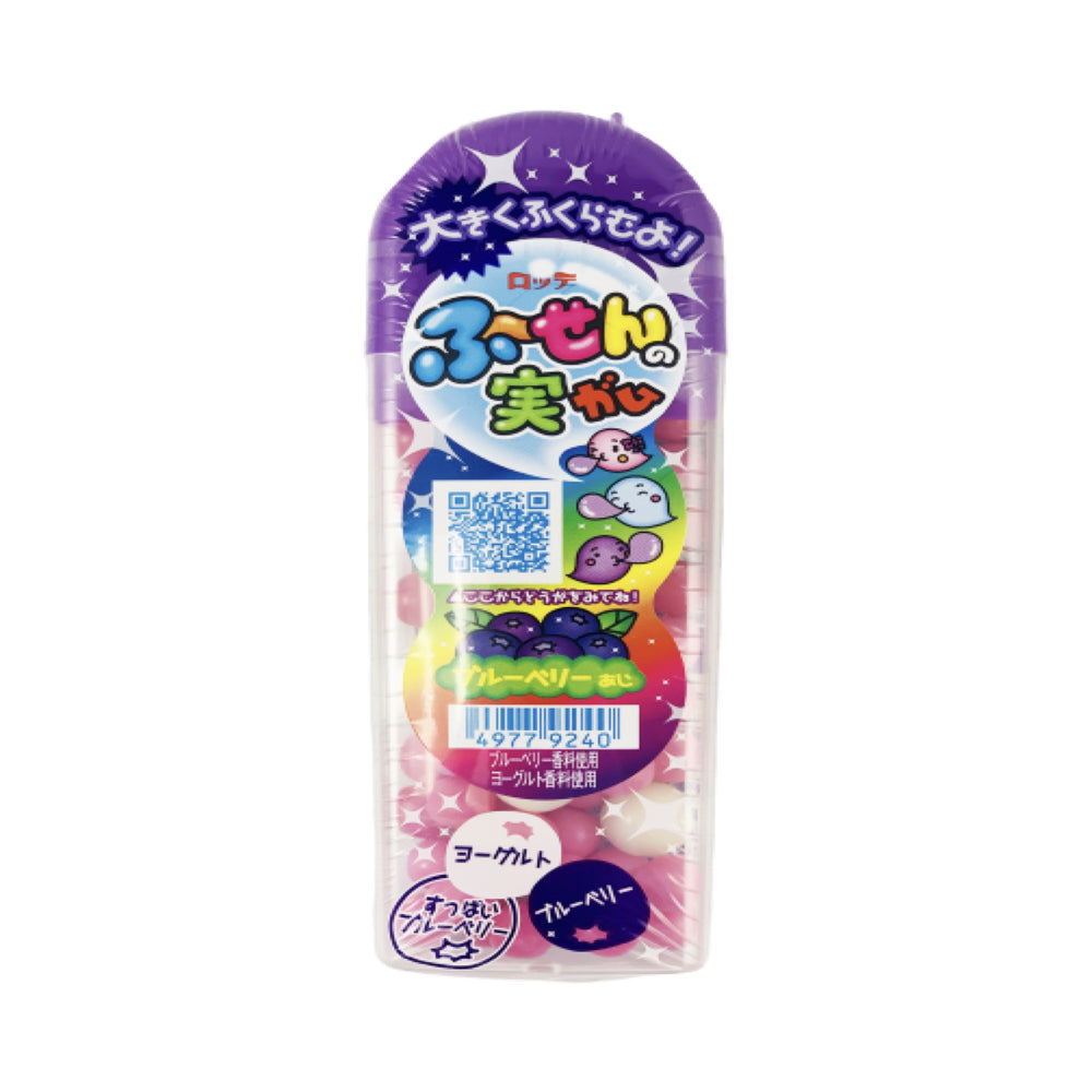 Fushigina Chewing Gum Blueberry Flavor