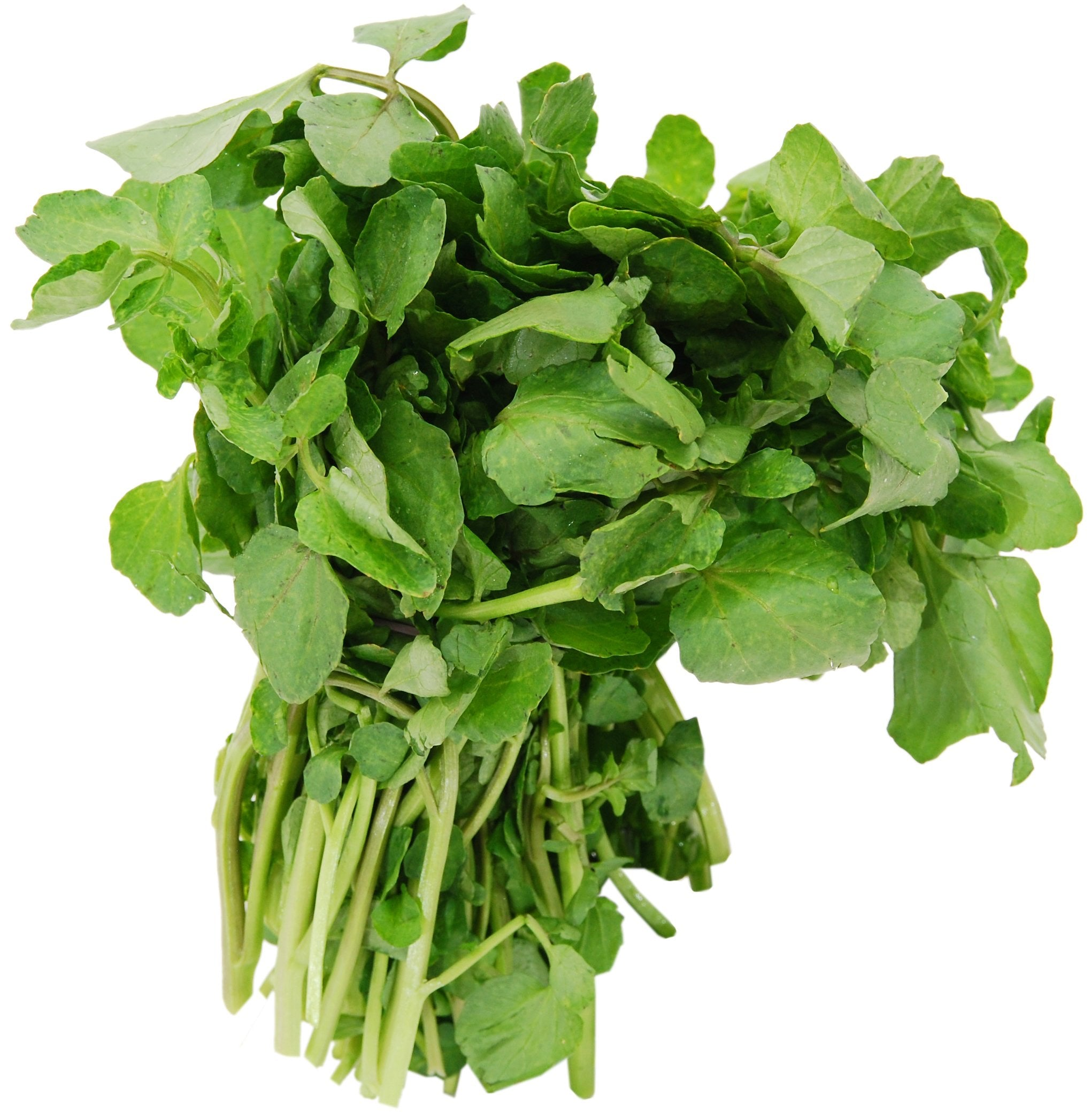 Fresh Watercress (2 Bunches)