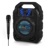 [Open Box] EARISE T15 Karaoke Machine with Wired Microphone for Kids & Adults