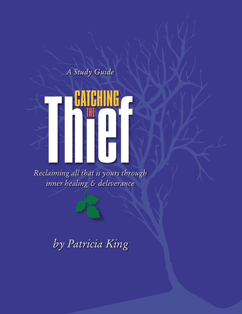 Catching the Thief by Patricia King Manual (PDF)