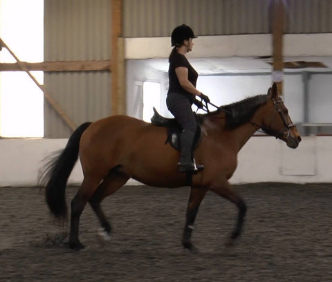 Working student Lolita on her 13 yr old  Oldenburg mare, Libby, as she was in her first lesson here, in snaffle and her own GP saddle