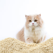 Load image into Gallery viewer, Flushable Nano-tech Tofu Cat Litter-Pet Supply CHOWSING