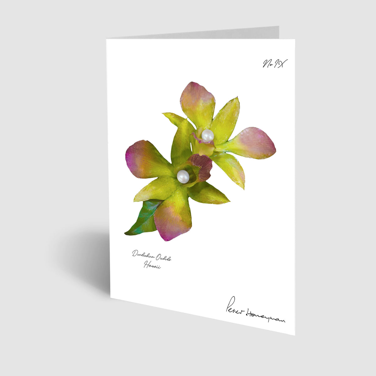 Green Orchid Notecard