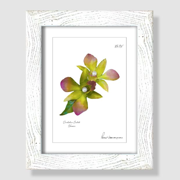 Green Orchid White Wood Framed Print