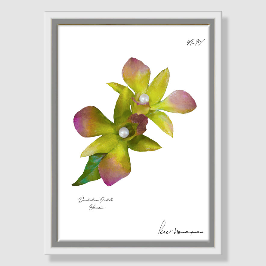 Green Orchid Framed Canvas Print
