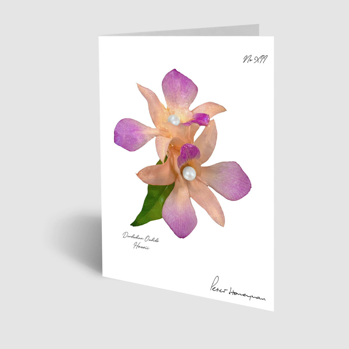 Peach Orchid Notecard
