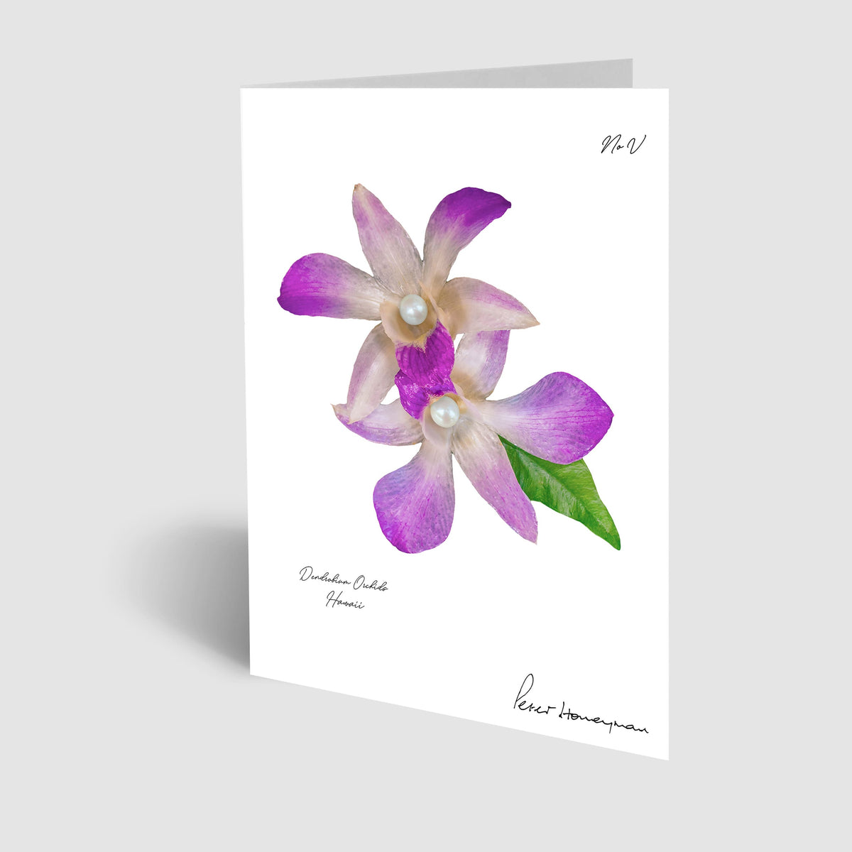 Lavender Orchid Notecard