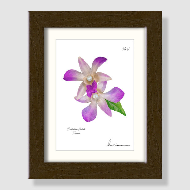 Lavender Orchid Walnut Wood Framed Print
