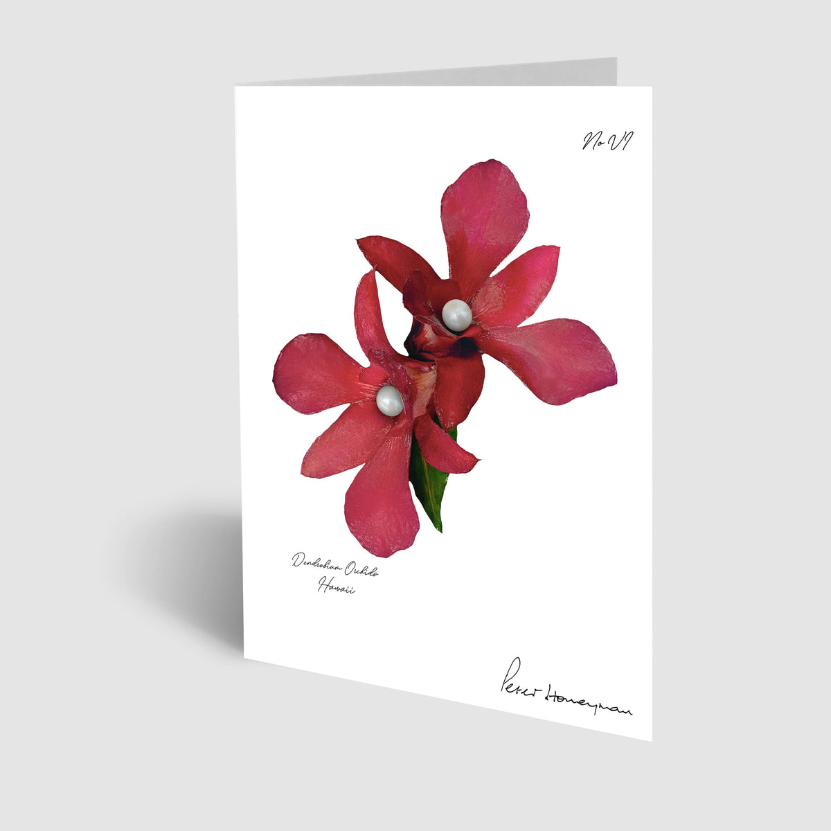 Red Orchid Notecard