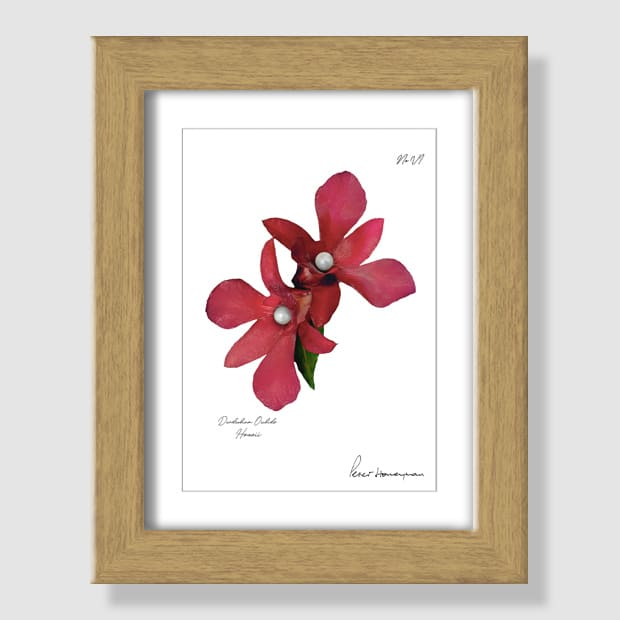 Red Orchid Natural Wood Framed Print