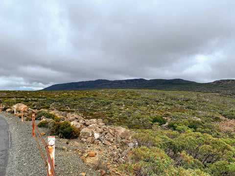 Cyclists approaching the summit of Mt Wellington / Kunyani experience stark, rugged landscape with rocks and windswept bushes