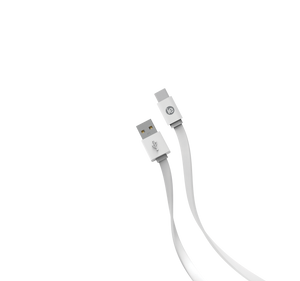 4' FLAT USB C CABLE