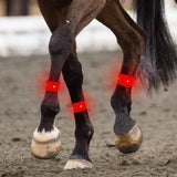 3 Colors Highly Visible LED Lights Horse Ankle Glow Band for Horseback Riding In Night
